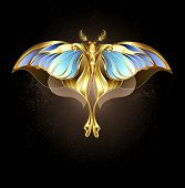 pic of moth  - Moth of gold and bronze with glass - JPG