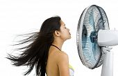 Pretty Woman Enjoying Fan Blowing