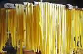 Homemade pasta with egg and flour