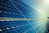 Solar Panels With Sun Reflection