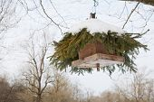 Bird Box Hanging From A Tree