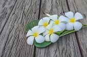 A bunch of frangipani white with a yellow head smell. assuage