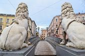 Lions bridge in St. Petersburg