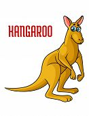 Cartoon kangaroo character