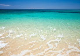 foto of burro  - Fuerteventura Burro Beach part f Grandes Playas de Corralejo on the north of the island - JPG