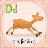 picture of letter d  - Flashcard letter D is for deer - JPG