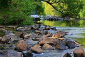 Brandywine River