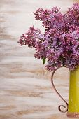 image of pitcher  - Fresh lilac flowers in the metal yellow pitcher against white background - JPG