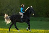 picture of bareback  - Young woman riding beautiful horse bareback at summer day - JPG