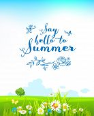 picture of summer insects  - Beautiful summer background with flowers and a lonely tree - JPG