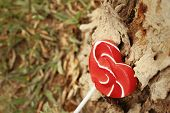 picture of valentine candy  - Candy valentines hearts on a background of wooden - JPG