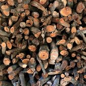 stock photo of lumber  - stack of firewood industry background - JPG