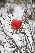 Heart In A Bush