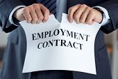 Close Up Of Businessman Hands Breaking Employment Contract poster