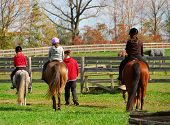 pic of horse riding  - children riding ponies and horses in a countryside - JPG