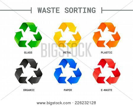 Waste Sorting Segregation Different Colored