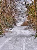 Wintry path