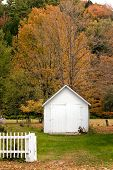 Grafton, Vt Shed In Autumn
