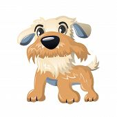 Beautiful Funny Cartoon Dog, Furry Human Friend, Home Animal And Decorative Dog: Cute Fluffy Animal, poster