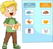 Illustration of a Kid Grouping Animals Together