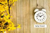 Daylight Savings Time Spring Concept Top Down View With White Clock And Yellow Forsythia Flowers On  poster