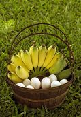 Banana An Duck Eggs In A Wood Basket, A Close Up Photo Image Of Yellow Hand Of Bananas An White Duck poster