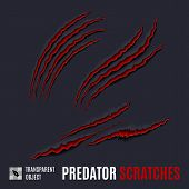 Animal Red Scratches On Dark Background. Claw Scratch Mark. Animal Predator Paw Claw, Knife Scratch  poster