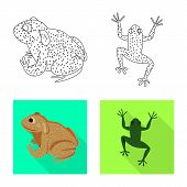 Isolated Object Of Wildlife And Bog Icon. Set Of Wildlife And Reptile Stock Vector Illustration. poster