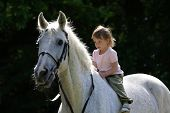 picture of bareback  - Little beauty intent girl riding bareback by gray beautiful big horse with black bridle. Animal is not in focus.