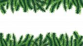 Christmas Tree Border. Holiday Banner, Vector Fir Tree Branches Isolated On White Background. Illust poster
