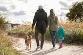 family, pets and people concept - happy mother, father and little daughter walking with beagle dog i poster
