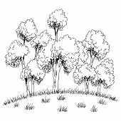Grove On The Hill Tree Forest Graphic Black White Sketch Illustration Vector poster