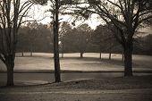Rainey Day Golf poster