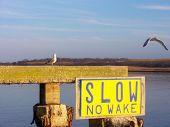 Slow, No Wake poster