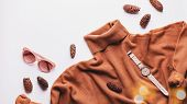 Woman Brown Sweater Or Dress With Leather Bag, Sunglasses, Jewelry, Fashion Accessories And Autumn L poster