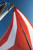 White-red Developing Sail On A Yacht Mast Against The Blue Sky, Bottom View. Traveling By Sea On Sun poster