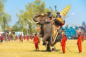 Thai King Elephant Up Rearing Hind Legs