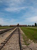 image of auschwitz  - Auschwitz  - JPG