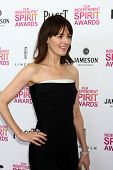 LOS ANGELES - FEB 23:  Rosemarie DeWitt attends the 2013 Film Independent Spirit Awards at the Tent on the Beach on February 23, 2013 in Santa Monica, CA