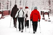 Group of senior women in the park - nordic walk in winter during blizzard