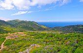 Trail To A Wilderness Coast