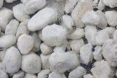 White Stones Underwater
