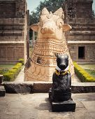 picture of trichy  - Statue of Nandi Bull in front of Gangaikonda Cholapuram Temple - JPG