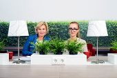 Portrait of confident female environmentalists sitting at desk in office