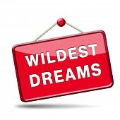 Wildest dreams make wild dream come true