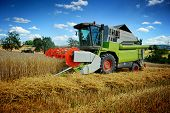 foto of combine  - Combine harvester working on cultivated field at sunny autumn day - JPG