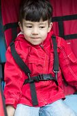 A little boy in a red jacket wearing seatbelts