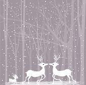 stock photo of rudolph  - Christmas card with deer for Merry Christmas and Happy New Year - JPG