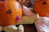 Pumpkin Babies Closeup