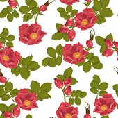 stock photo of wild-brier  - Seamless floral background with wild rose  - JPG